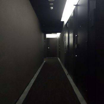 共用廊下は明るさ控えめで落ち着いた印象。リラックスしてお部屋に入ることが出来そう。