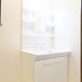 その右手には棚付きの洗面台があります。