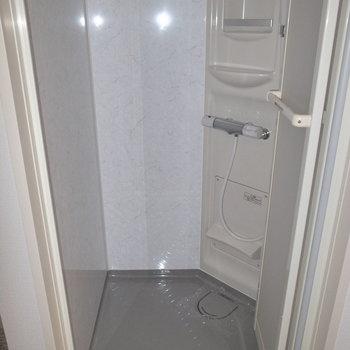 お風呂はシャワールーム。コンパクトです。 ※フラッシュを使用しています。