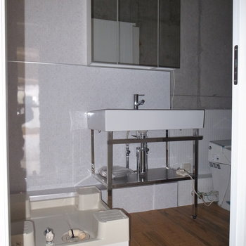 シャワールームのさらに奥が、左から洗濯パン、洗面台、トイレです。 ※フラッシュを使用しています。