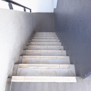 【共用部】階段で上がってきます。