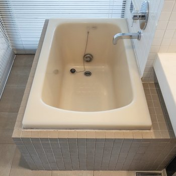 浴槽は奥に。海外のホテルのようですね。