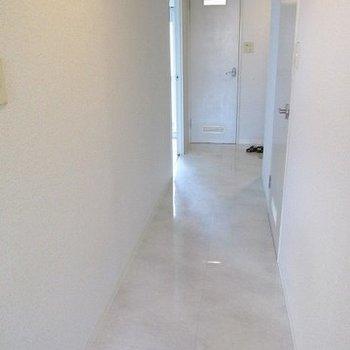 廊下も真っ白!