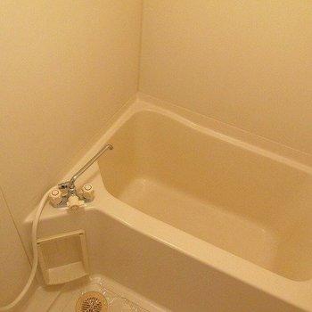 浴室も十分な大きさ!