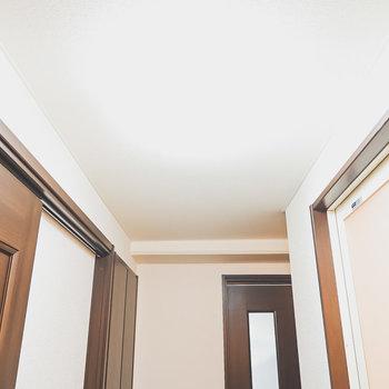 お風呂と洋室の間に突っ張り棒で仕切りカーテンを引いて簡易的な脱衣所にできそう。