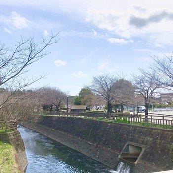 すぐそばには川が流れ、講演もあってとても穏やかです。