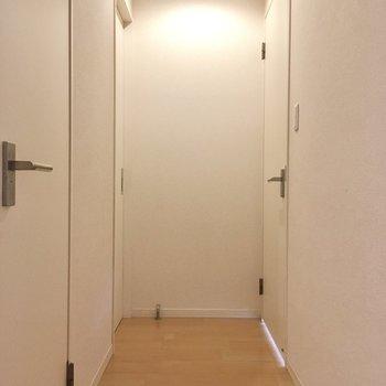 右側に洋室、左側はサニタリースペースです。