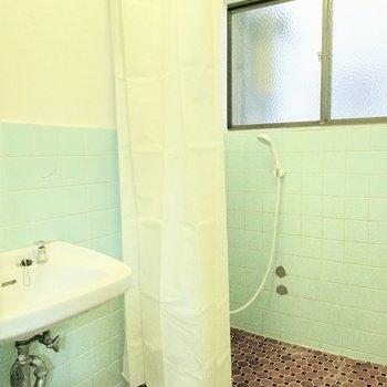 浴槽はなくシャワー室です。床もタイルなのでマットを敷いてもいいかも。