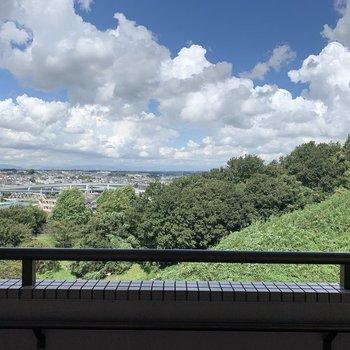 【洋室】窓からは青空が見えます。