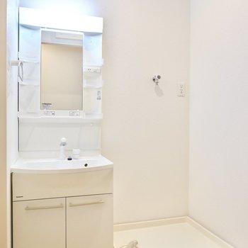 脱衣所に入ると洗面台と一段高くなった洗濯機置き場。