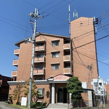 5階建てのどっしりしたマンション!