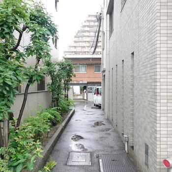 建物の左端の通路からは裏側の駐車場へと行けます。
