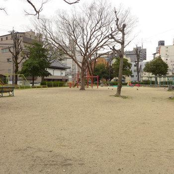 建物南側にある公園。のどか〜。