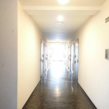 共用部】採光部のある廊下。