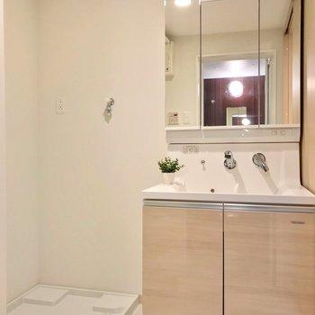 大きな鏡付きの洗面台で、朝の支度もラクラクです。(※写真の小物は見本です)