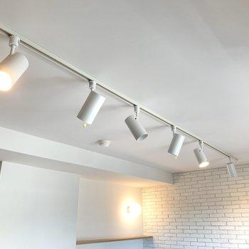 照明はライティングレール。