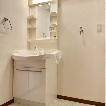 サニタリーには独立洗面台。洗濯機もこちらにどうぞ。