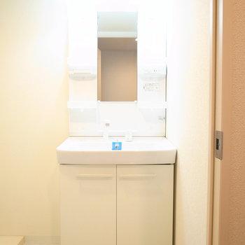 脱衣所入ってすぐに洗面台です。