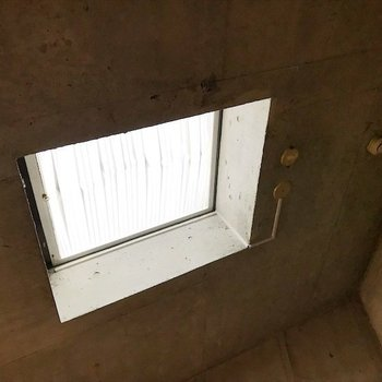 天井にも窓があります!