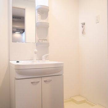独立洗面台もしっかりと。そのとなりに洗濯パンです。