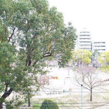 そして眺めは、目の前の公園!深緑の隣人とは顔見知りの関係に。