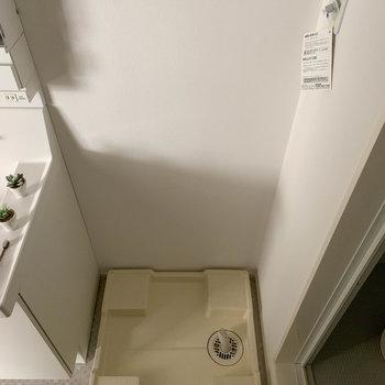 隣に洗濯機置き場