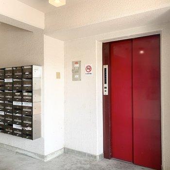 エントランスはエレベーターとポストのシンプルな空間。