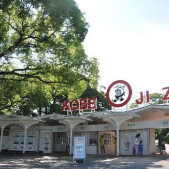 周辺】東に行けば王子動物園。かわいい動物たちに癒やされてください〜、入園料も比較的安いです◎