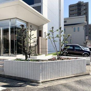 植栽の奥に駐車場と自転車置場が並びます。