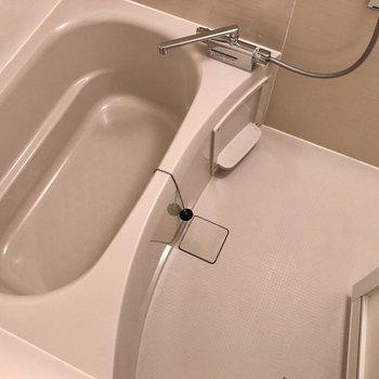 洗い流す方は広々と使えそうです。