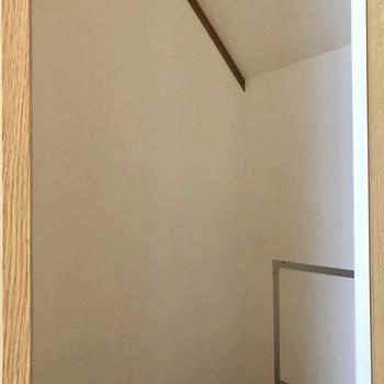 階段下に収納スペースがあります。ここには日用品のストックや掃除用具などが入れられそうです。