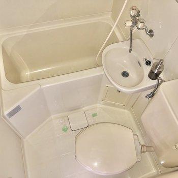 お掃除はシャワーでまとめてできますね。※写真はフラッシュを使用しています