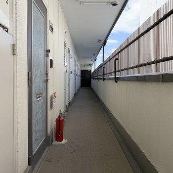 【共有部】半内廊下で雨は防げそう。