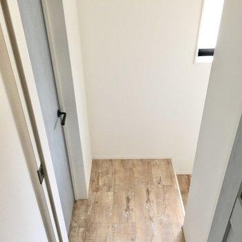 ドアを開けて右が玄関へ、左はサニタリー。