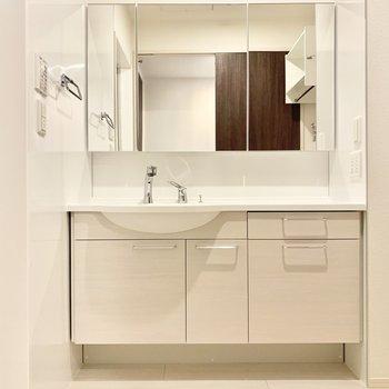 見やすい鏡、大きな独立洗面台です。