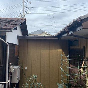 横を見るとまた隣家。こちらは裏口でしょうか……?