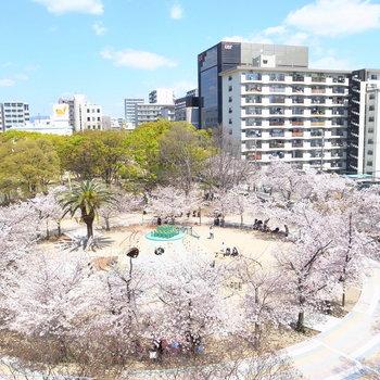【共用部】すぐ向かいには公園が!気分転換に最適です♪