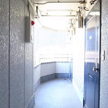 【共用部】明るさ・風通しのいい廊下です。