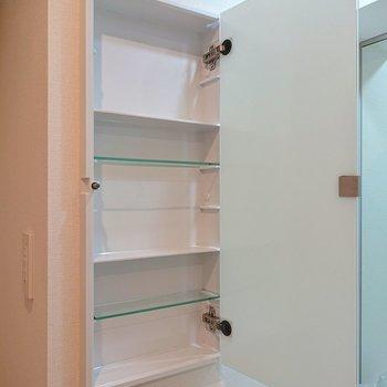 左には戸棚があるので、洗剤など片づけられます。