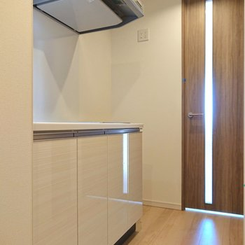 洋室の扉を抜けるとすぐのところに冷蔵庫が置けます。