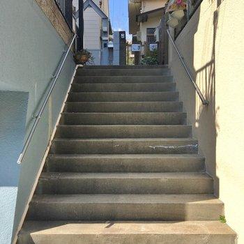 この階段の先に今回のお部屋がございます
