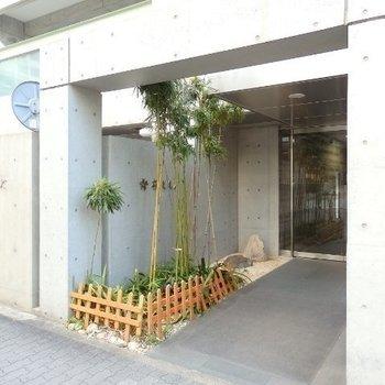 竹の生えているエントランス