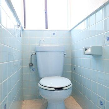 トイレはブルー!忘れられないトイレになりそう。