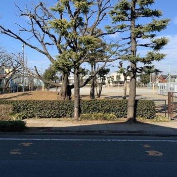 【洋室】眺望は道路と小学校です。