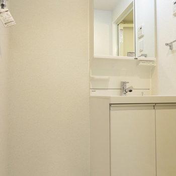 洗面脱衣所も当然完備(※写真は7階の反転間取り別部屋のものです)