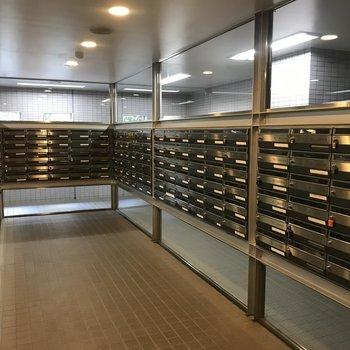 郵便ボックスは1Fにあります※写真は前回募集時のものです