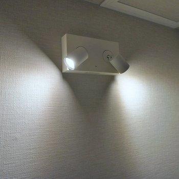 なんだか可愛らしい照明を発見!。※写真は同タイプの別部屋