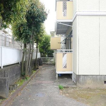 建物を正面に見て左の通路を奥に行くと階段があります。