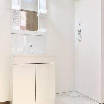洗面台と洗濯パンはお隣どうし。