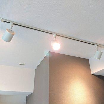 【ディテール】こちらはライティングレールで灯りを変えることもできます。
